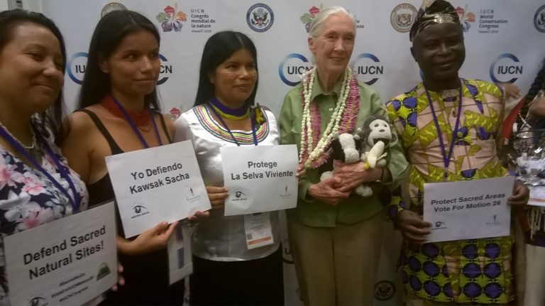 Jane Goodall (second from right) with indigenous leaders at World Conservation Congress in Hawai'i, September 2016