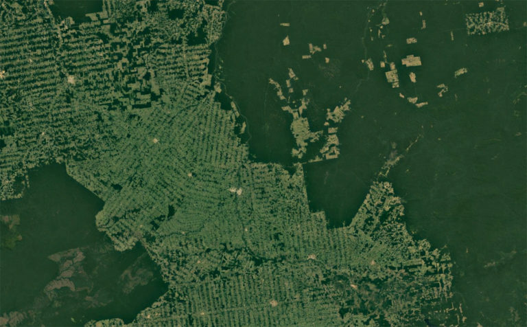 Deforestation in Acre and Rondonia in the Brazilian Amazon. Courtesy of Google Earth / NASA.