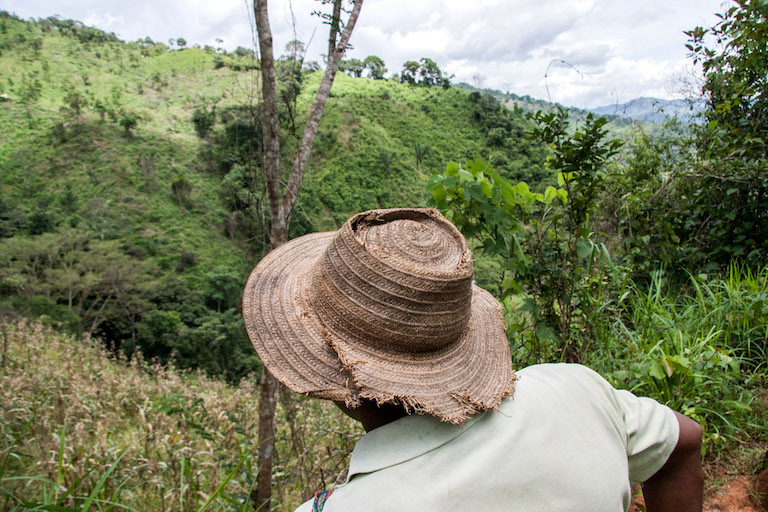 Goejet Miranda overlooks the mountainous land where the indigenous community of Quebrada Caña in western Panama grows some of its corn. Photo by Camilo Mejia Giraldo