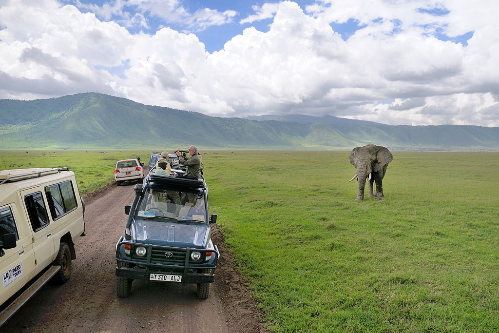 Elephant and tourists at Ngorongoro Crater. Photo by George Lamson. Source: Wikimedia Commons, licensed under CC BY-SA 2.0.