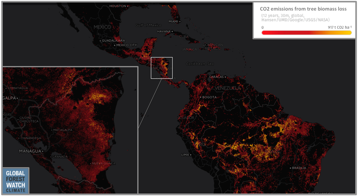 Tree biomass loss from deforestation activities is a major source of carbon emissions in Latin America. Nicaragua has some of the highest emission levels, with 19 million metric tons of CO2 released between 2001 and 2014.