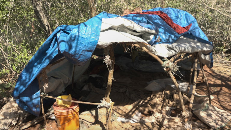 Loggers build makeshift camps from wood, rope and tarpaulin deep in the bush. Loggers will stay for days and sometimes weeks at a time and clear areas of forest for timber and charcoal production. Photo by Willy Lowry
