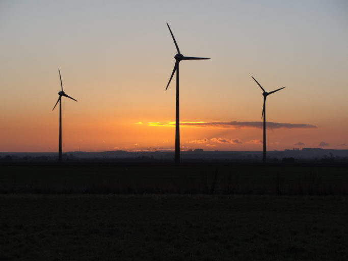 Studies conducted before the construction of wind farms weren't accurate predictors of whether the turbines would pose a threat to bats, according to the study. Photo courtesy of Fiona Mathews