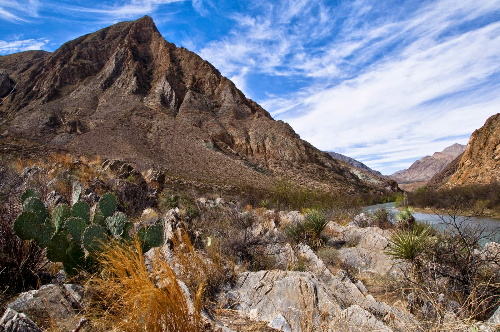 The Great Chihuahuan Desert aka. Cactus Country, the locale for one of the early NAFTA legal battles involving the environment. Photo by David Lauer licensed under the Creative Commons Attribution-Share Alike 2.0 generic license