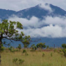 The Kunuku Mountains as seen from Lethem, Guyana. Photo by Kevin Gabbert via Wikimedia Commons