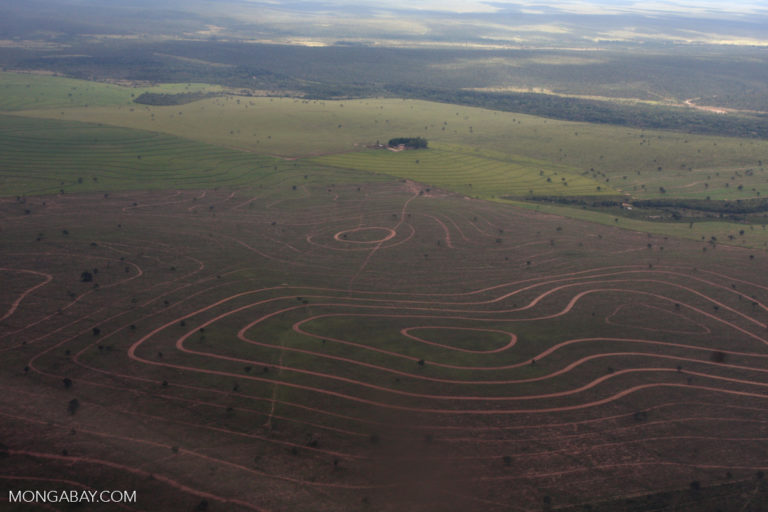 A recently cleared patch of the Cerrado in Brazil. The Cerrado is home to 44 percent of the country's agriculture. Photo by Rhett A. Butler
