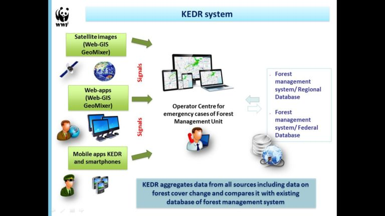 KEDR generates alerts pertaining to forest cover change by applying the GLAD (Global Land Analysis and Discovery) algorithm on medium-resolution satellite images. The system also incorporates additional information—forest taxa, high-resolution satellite images, data from drones and signals sent by rangers on the ground and citizen witnesses.