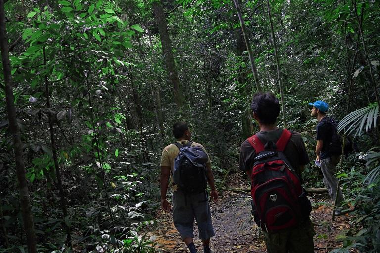 Trekkers in Bukit Lawang. Photo by Aria Danaparamita
