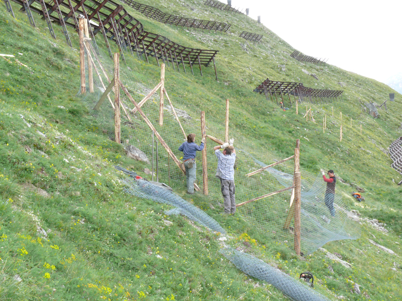 Ecologists assemble fencing for a block of experimental plots on the slopes of the Swiss Alps in Val Mustair. Photo by Anita Risch.