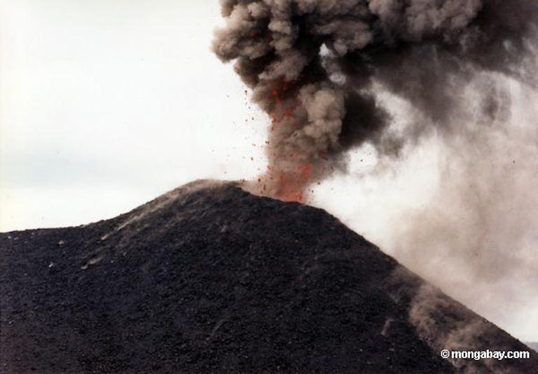 Anak Krakatau erupting in 1992. Photo by Rhett A. Butler.