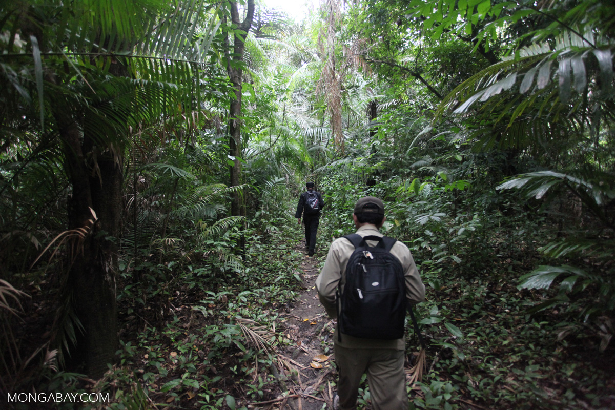 Rhino patrol in Ujung Kulon park. Photo by Rhett A. Butler.