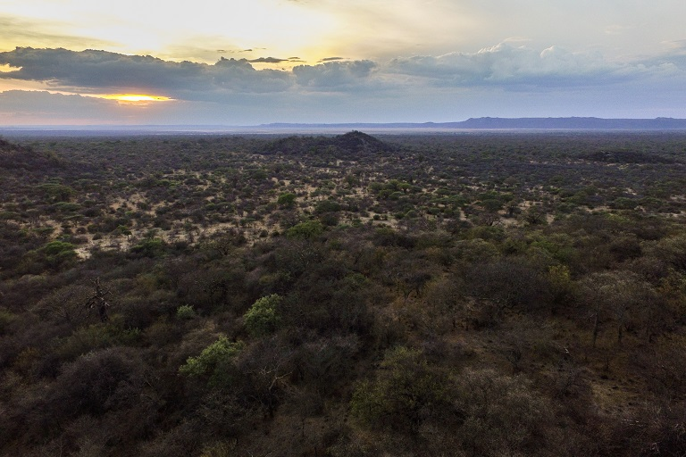 A drone's view of the Yaeda Valley in northern Tanzania. The valley is part of the Great Rift Valley landscape. These Acacia-Commiphora woodlands are home to the Hadzabe people. Photo by Willy Lowry for Mongabay.