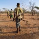 Hadzabe walinzi wa jadi, or village game scouts patrol the forests of the Yaeda Valley. Their job is to patrol protected forests and report any deforestation, poaching or creation of settlements to local authorities. Their salary is paid by Carbon Tanzania from revenue made from carbon sales. Photo by Sophie Tremblay for Mongabay.