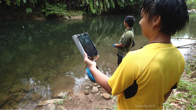 "Indigenous citizen science is not for technophobes: here villagers on the Moyog River use an affordable underwater sonar scanner donated by a sympathetic fisherman from England to assess populations on a ""Tagal"" section where taboos mean only ""non-intrusive"" sampling techniques can be used."
