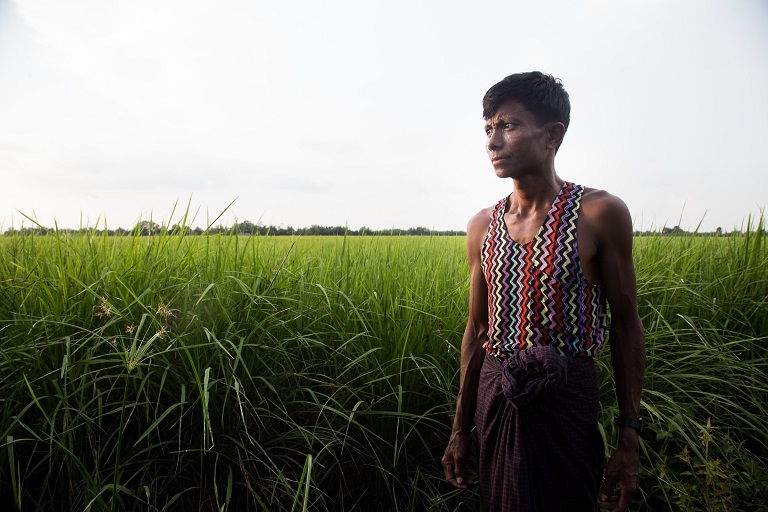 A villager stands in front of a rice paddy in one of the villages surrounding MKWS. The area used to be mangrove forest, but since people started to move in about 40 years ago, much of the land has been transformed into rice paddy fields. Photo by Ann Wang for Mongabay