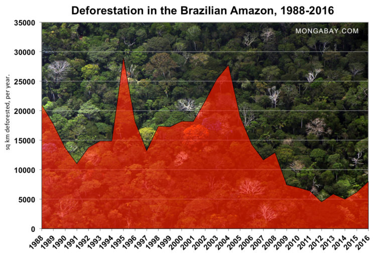 deforestation-in-the-brazilian-amazon