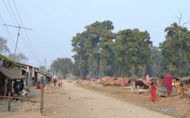 Village life on the east side of Chitwan National Park, where people live next door to the forest where tigers reside. Here, in a riskier area for tiger encounters, people's attitudes were not as positive toward the animals. Photo by Sue Nichols/Michigan State University Center for Systems Integration and Sustainability