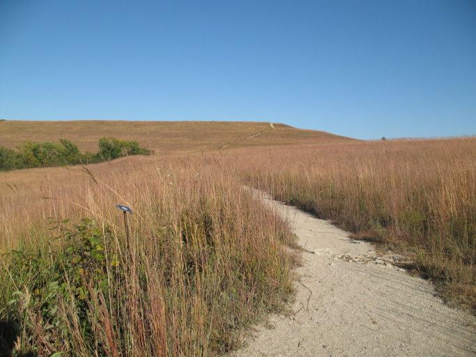 1280px-konza_prairie_trail_fall_1
