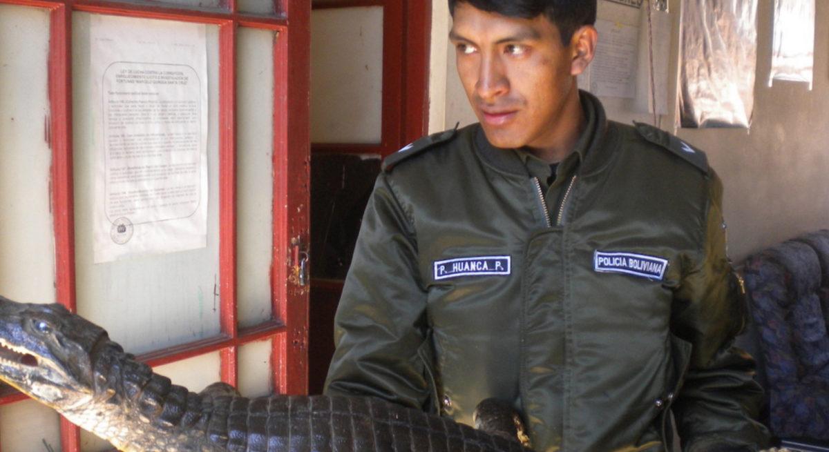 wildlife-trafficking-bolivia-4