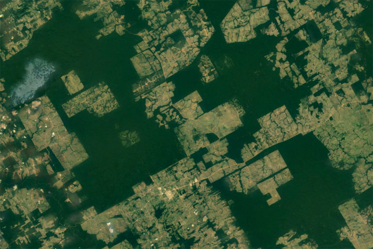 NASA / Google Earth image showing deforestation in Pará in the Brazilian Amazon.