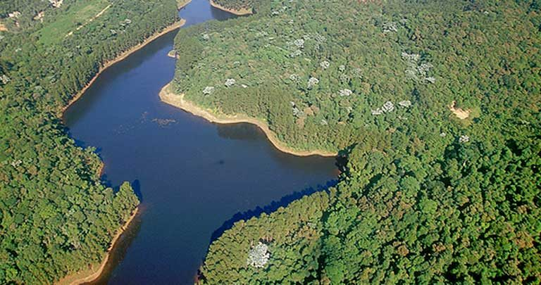 Parque Estadual da Cantareira, one of the preserves that is likely to soon see private concessions for ecotourism, logging and other profit making activities. Photo courtesy of Secretaria Estadual do Meio Ambiente/SP