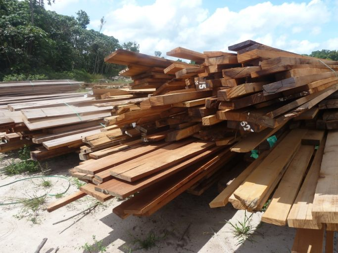 Timber stack at the Iwokrama mill site. Photo by Carinya Sharples for Mongabay