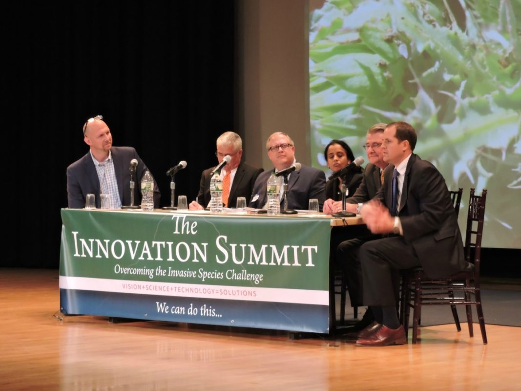 "Moderator Mike Stebbins from The Laura and John Arnold Foundation and panelists Robbie Barbaro from the OSTP, Earl Campbell from USFWS, Larry Clark from APHIS, Mike Mendelsohn from the EPA and Ritu Nalubola from the FDA in session 4 of the summit, ""Addressing 'Social License' & Advanced Regulatory Frameworks to Support Innovation."" Photo credit: NSIC."