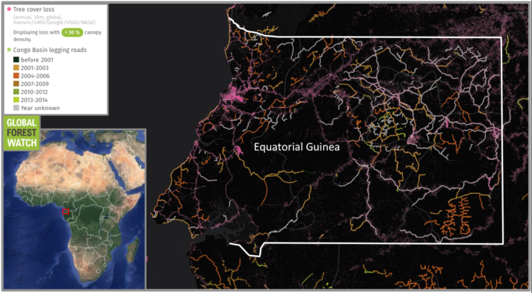 Equatorial Guinea lies in an area described by the study as being particularly affected by road development while possessing high ecological value. The online forest-monitoring platform Global Forest Watch shows logging roads proliferated during the past decade; in total, the country lost 2.5 percent of its tree cover between 2001 and 2014, much of this along its roadways.