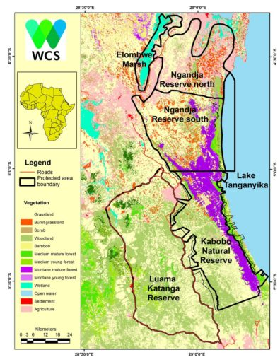 The new Kabobo Natural Reserve is contiguous with the Luama Katanga and Ngandja Reserves, collectively protecting an area nearly 25 times larger than the country of Burundi. Map by WCS