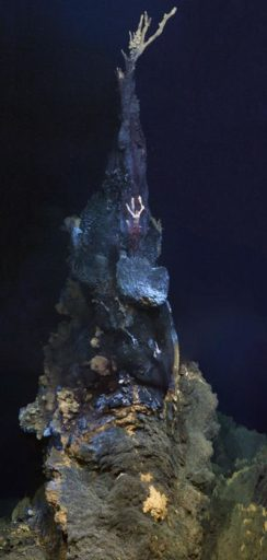 A hydrothermal vent chimnery in Longqi. Credit University of Southampton.
