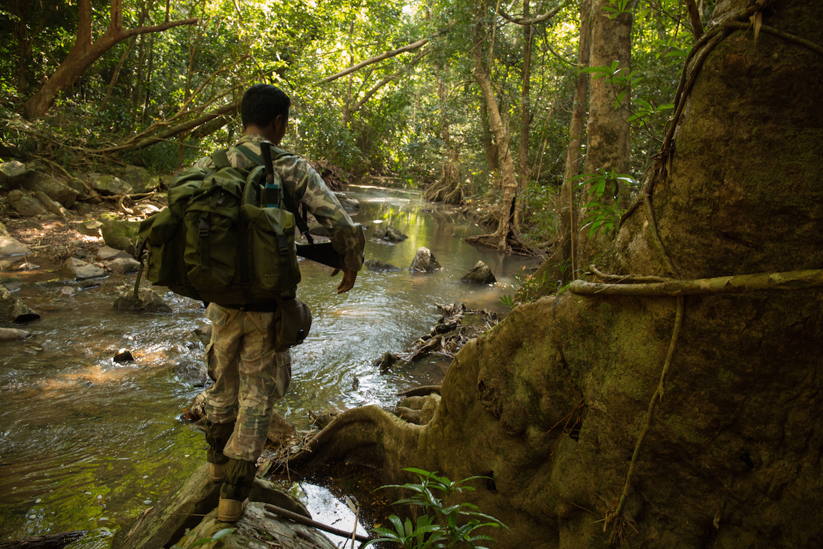 Wildlife rangers on patrol deep in Thap Lan national park search for illegal Siamese rosewood loggers. The illegal logging here is the beginning of a black-market trade in Siamese rosewood across Southeast Asia that sees the endangered hardwood end up thousands of miles away in furniture shops in China. Photo by Demelza Stokes.