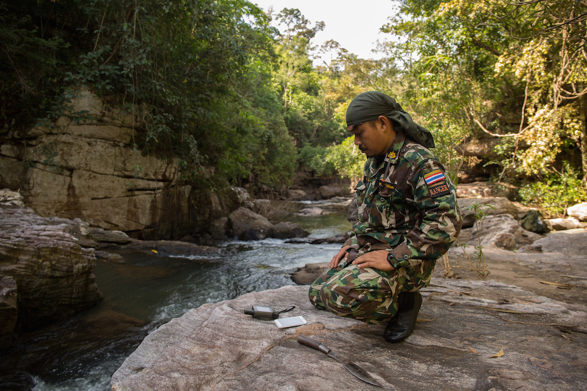 The rangers in Thap Lan National Park go on patrol deep in the lowland dipterocarp forest searching for illegal Siamese rosewood loggers - here Salak marks a waypoint on the GPS at a distinctive location to aid future patrols in this area. Photo by Demelza Stokes.