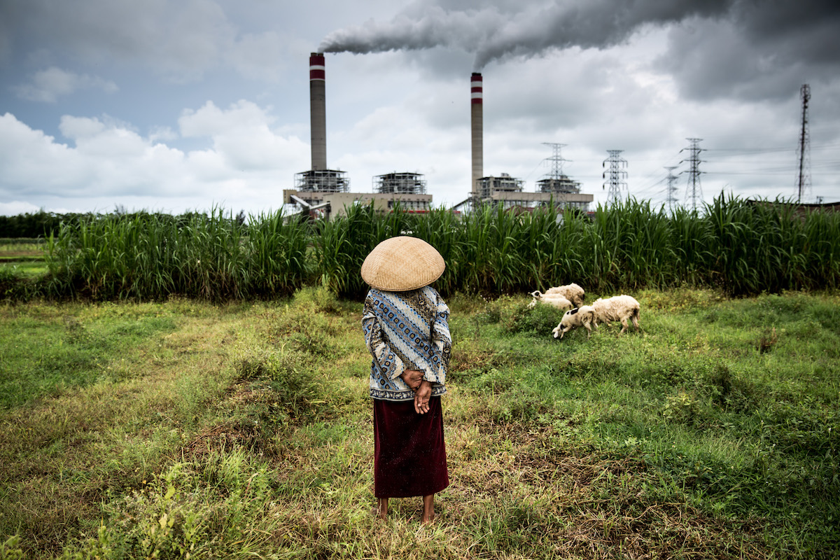 A shepherdess watches over her flock of sheep that graze near a coal power plant in Jepara, Central Java. Photo by Kemal Jufri/Greenpeace.