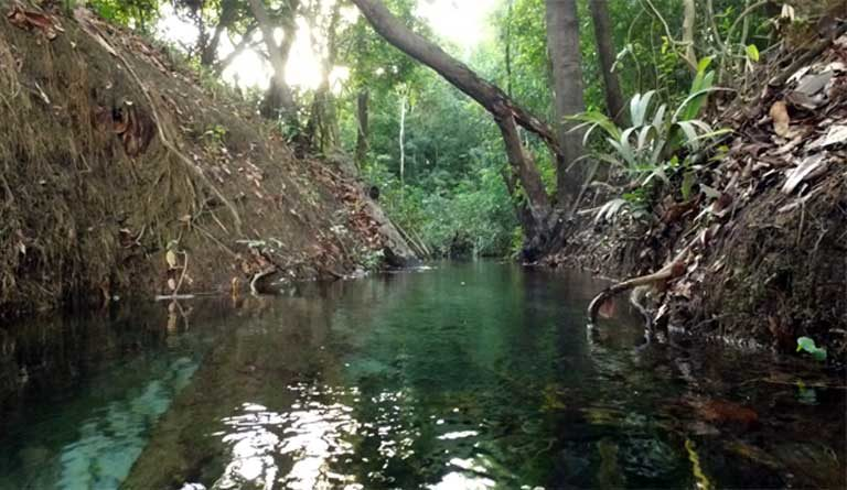 A creek flowing into the Teles Pires River. With the building of more than 40 dams in the region, these small waterways will be drowned, destroying fishing grounds and vastly altering ecosystems. Photo by Thais Borges