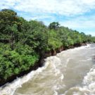 La Chorrera is an administrative district located in the department of the Amazon, part of the Predio Putumayo reservation. Photo courtesy of WWF Colombia