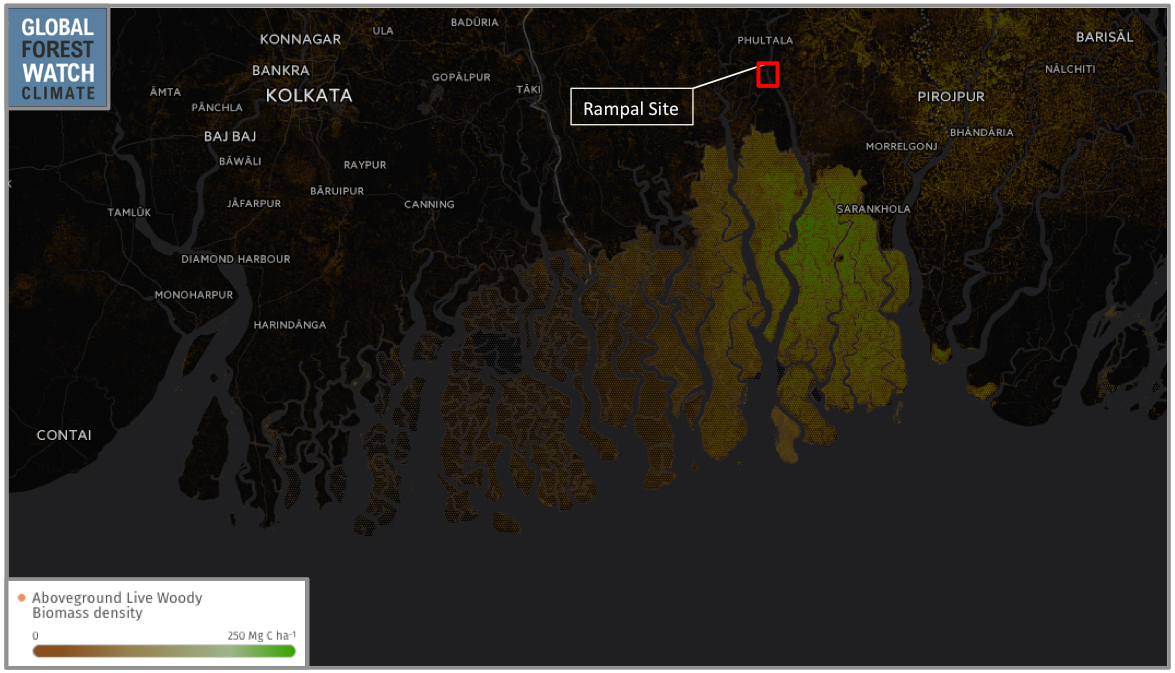 Global Forest Watch shows the portion of the Sundarbans with the greatest aboveground biomass density is most closely situated to the Rampal power plant, with its vegetation storing up to around 250 metric tons of carbon per hectare.
