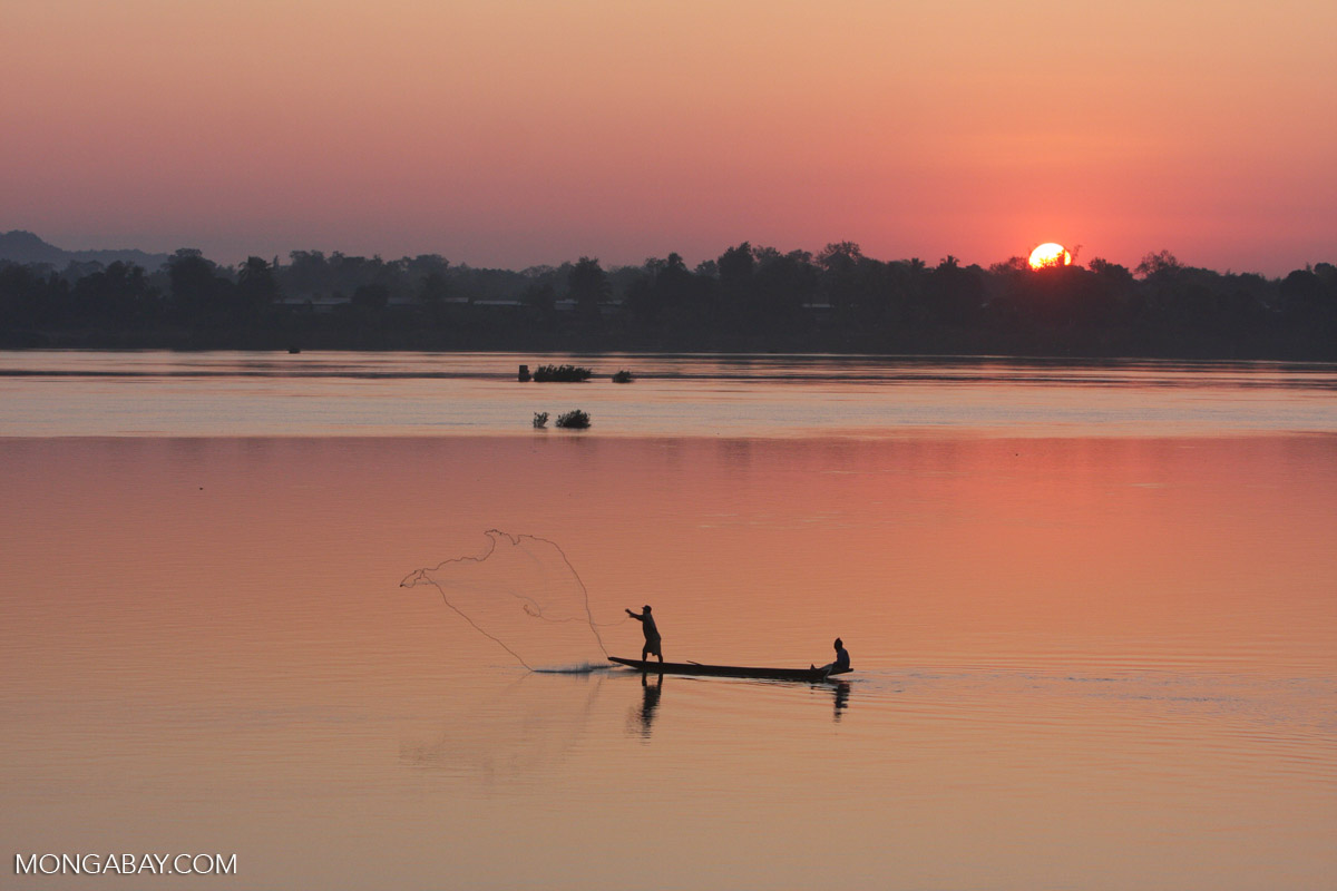 Throw-net fishing on the Mekong River in Laos. Photo by Nancy Butler.