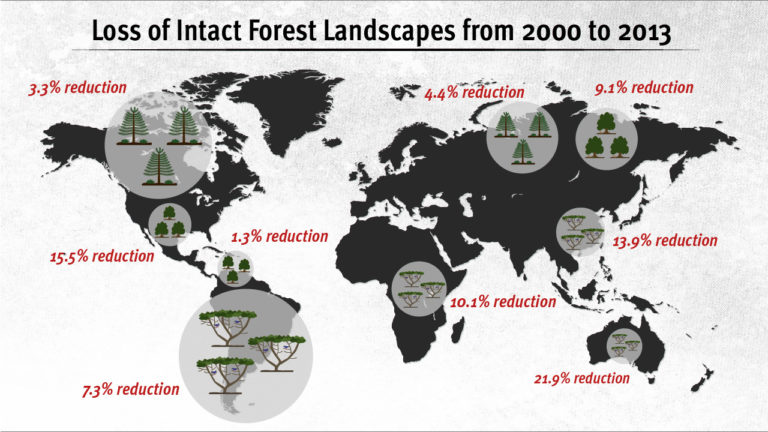The map above shows the Intact Forest Loss between 2000 and 2013 regionally throughout the world. Credit: Carla Schaffer/AAAS
