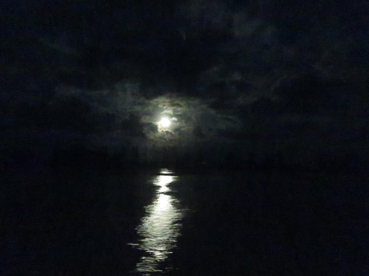 An impressionistic photo of magical moonlight reflecting on the Mahakam River. Photo by Gabriella Fredriksson
