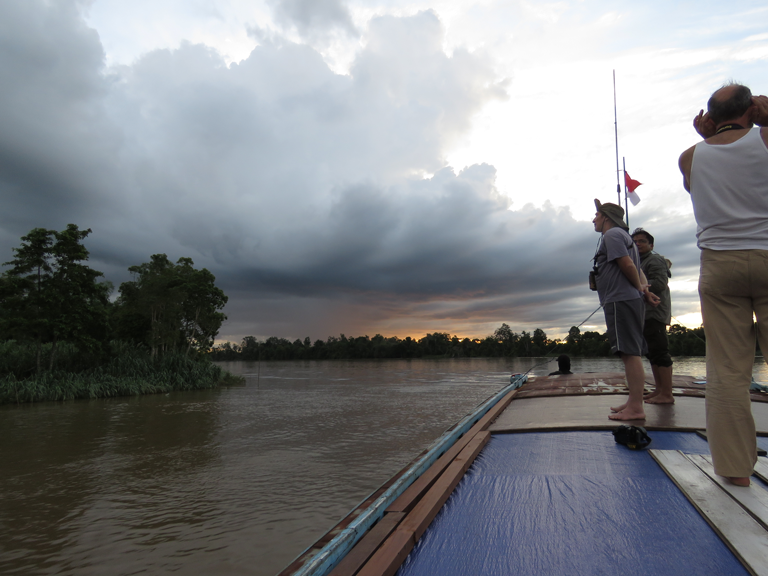 Sailing up the Mahakam towards the Mahakam Lakes. The slow glide along the river provides a great way to view wildlife. Photo by Gabriella Fredriksson