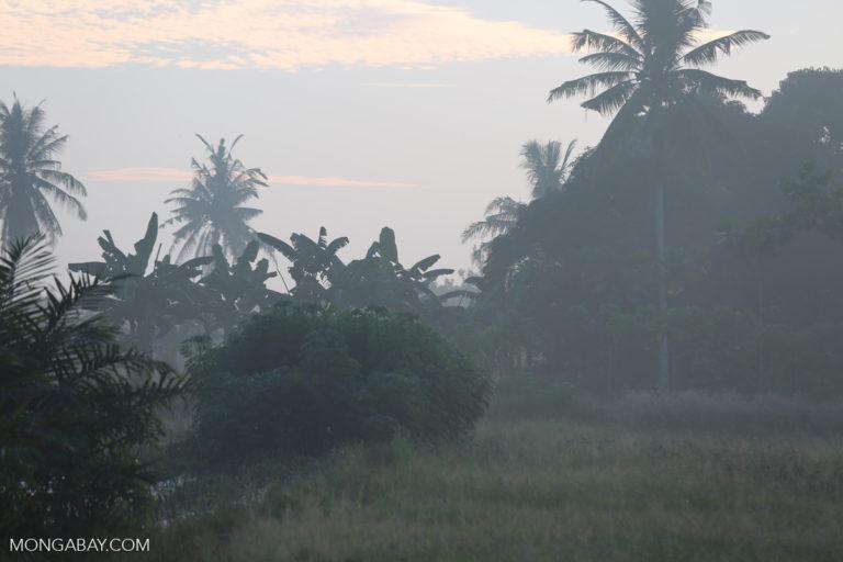north_sumatra_0634