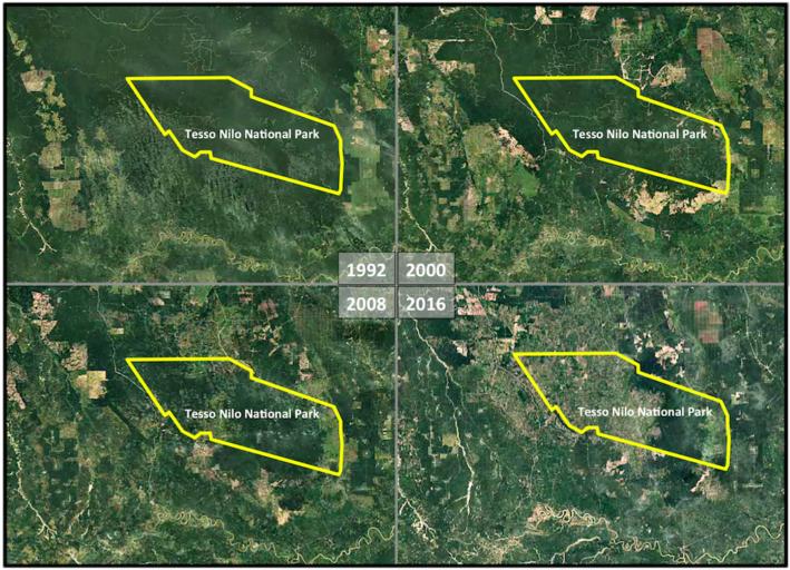 Kondisi Taman Nasional Tesso Nilo dari waktu ke waktu berdasarkan Google Earth