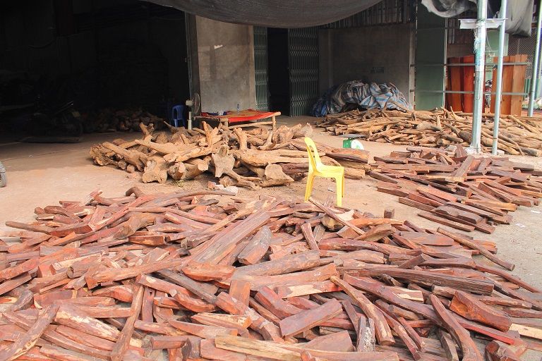 Piles of timber from the trac species for sale in the town's market. Photo by Michael Tatarski for Mongabay.