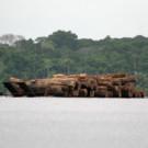 Rainforest timber on a barge in Gabon. Photo credit: Rhett A. Butler / Mongabay