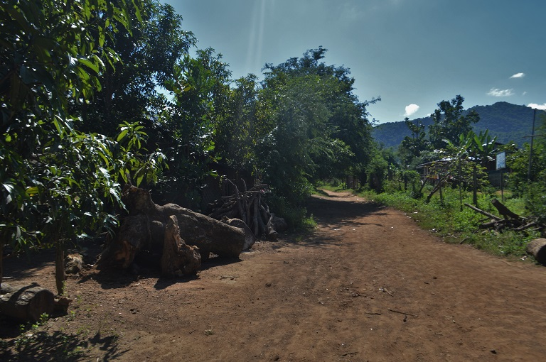 Logs piled up outside villagers' houses in Mandalay Region. Photo by Poppy McPherson for Mongabay