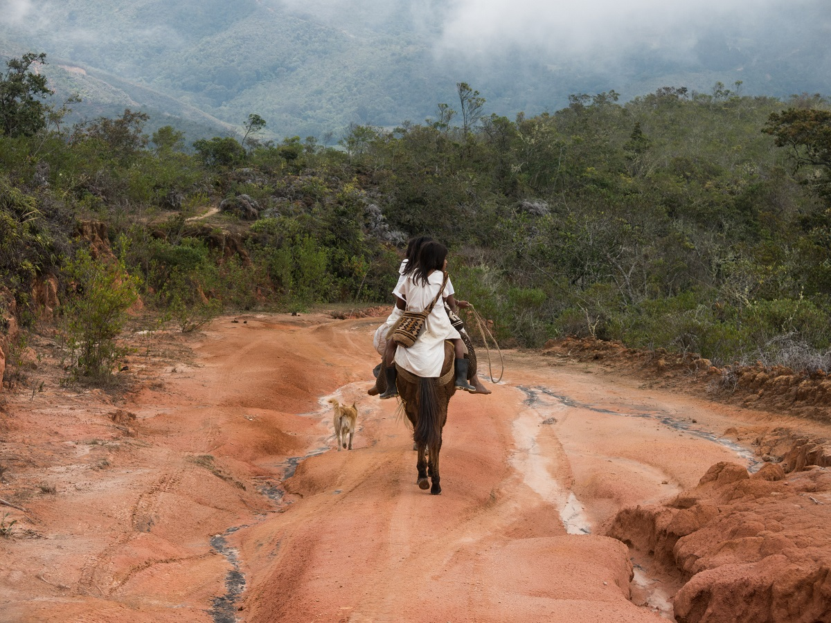 Indigenous Arhuaco peoples ride toward the forest in Colombia. Photo by Bram Ebus for Mongabay.