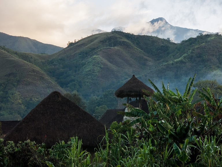 An Arhuaco village blends seamlessly into the landscape of the Colombian forest. Photo by Bram Ebus for Mongabay.