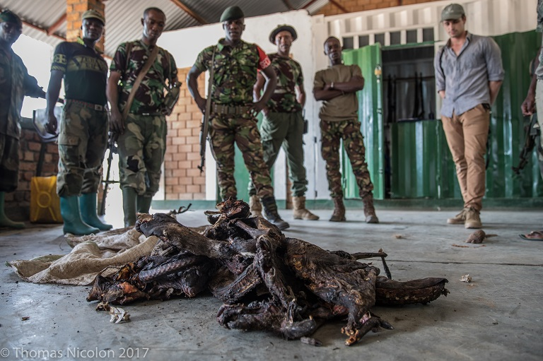 Garamba National Park rangers and scientist Mathias D'haen (far right) stand in front of poached pangolin, antelope, and wild boar recovered from the park earlier this month. Photo by Thomas Nicolon for Mongabay.