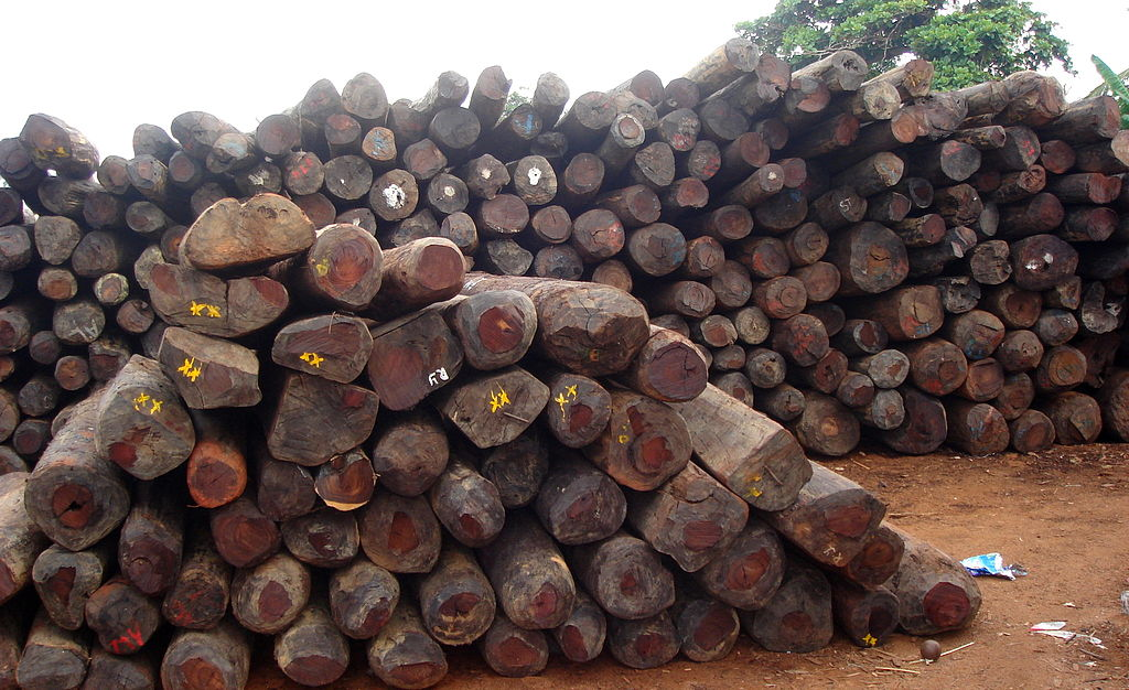 Illegal rosewood stockpiles in Antalaha, Madagascar, in 2007. Photo courtesy of Wikimedia Commons.