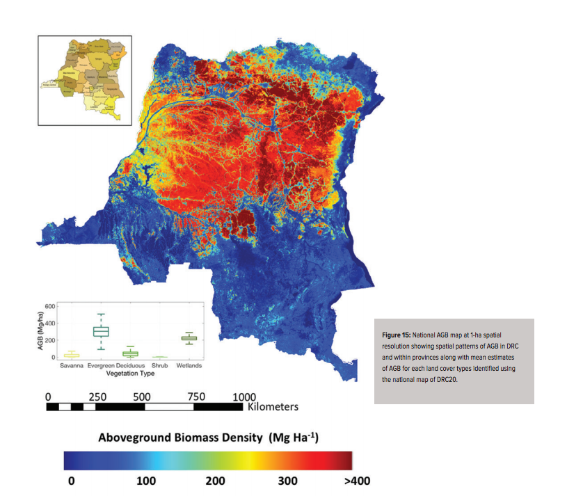 New carbon map will help protect the DRC's rainforests on